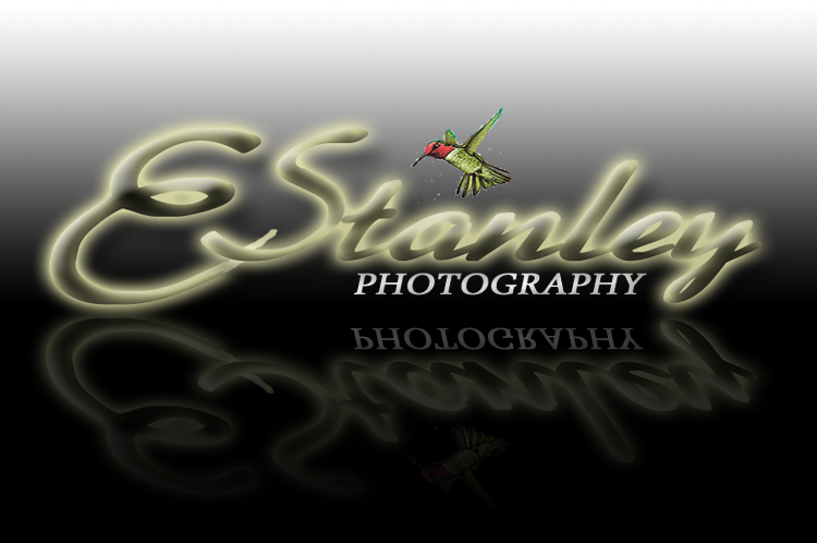 E Stanley Photography